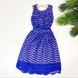 Eliza J Fit and Flare Blue Lace Dress Open Back
